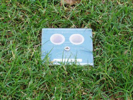 In Lawn